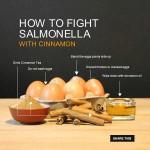 salmonella_2