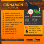 Cinnamon for pets-4