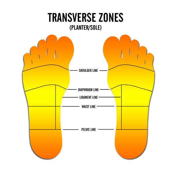 transerverse_zones_2